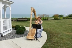 Grace, the wedding harpist